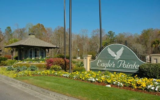 Eagle's Pointe real estate for sale