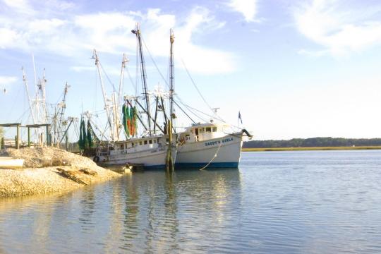 Hilton Head Island shrimp boat
