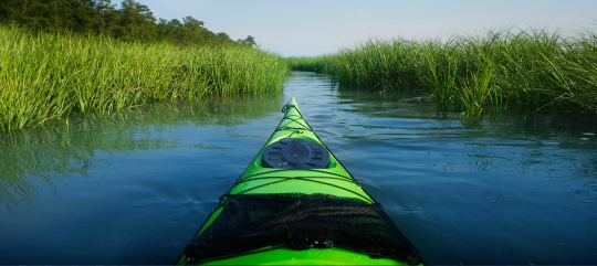 Kayaking in the salt marshes