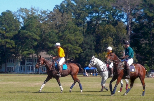 Polo matches at Rose Hill Plantation